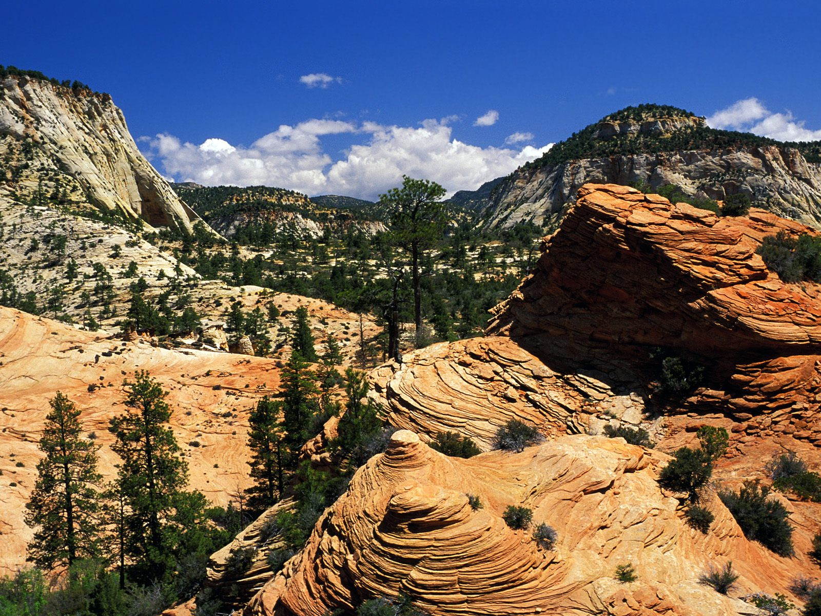 Kids-n-fun | Wallpaper swirling sandstone formations, zion