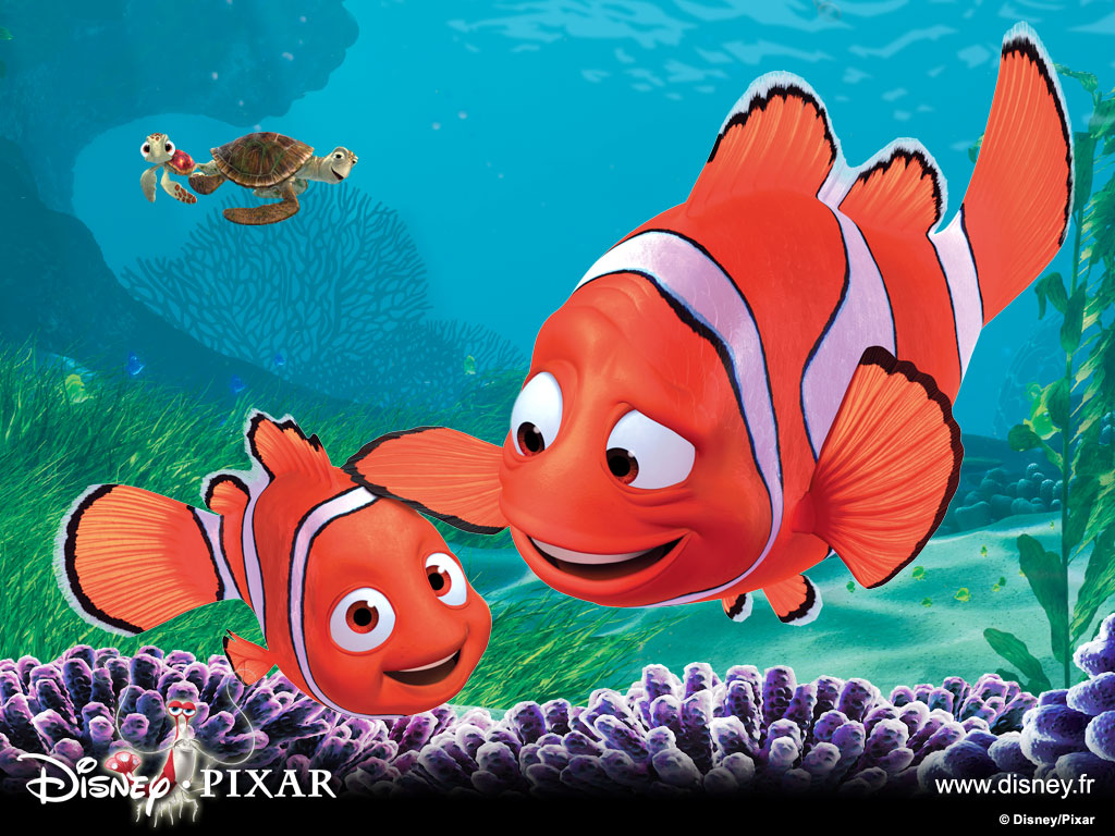 Love Quotes: Cute Nemo Fish Wallpapers For Desktop 2013-2014