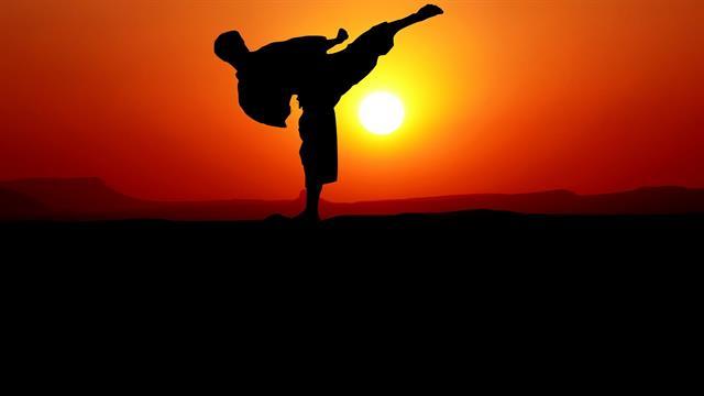 Kids N Fun Com 10 Coloring Pages Of Karate