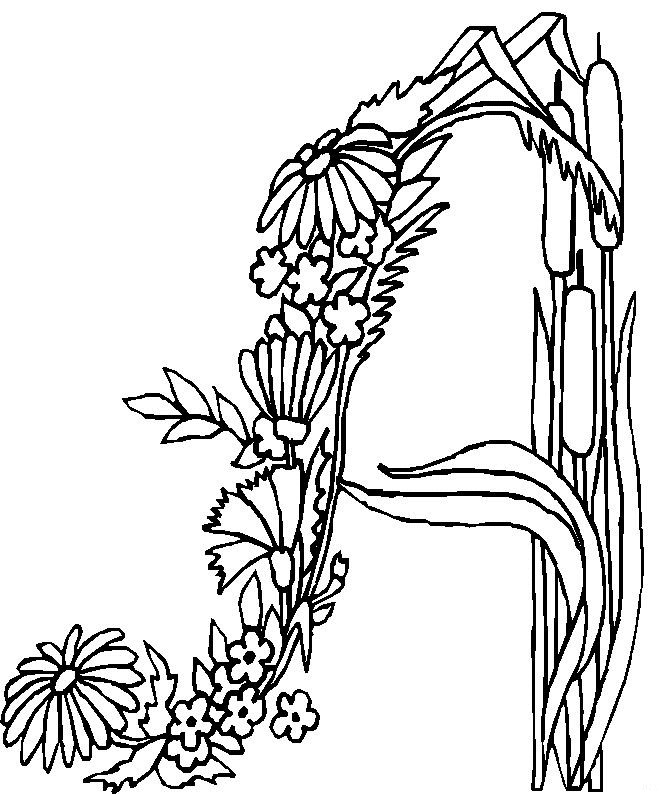 And More Of These Coloring Pages Alfabet Elfjes Alphabet Animals Diddl Fairies With Funny