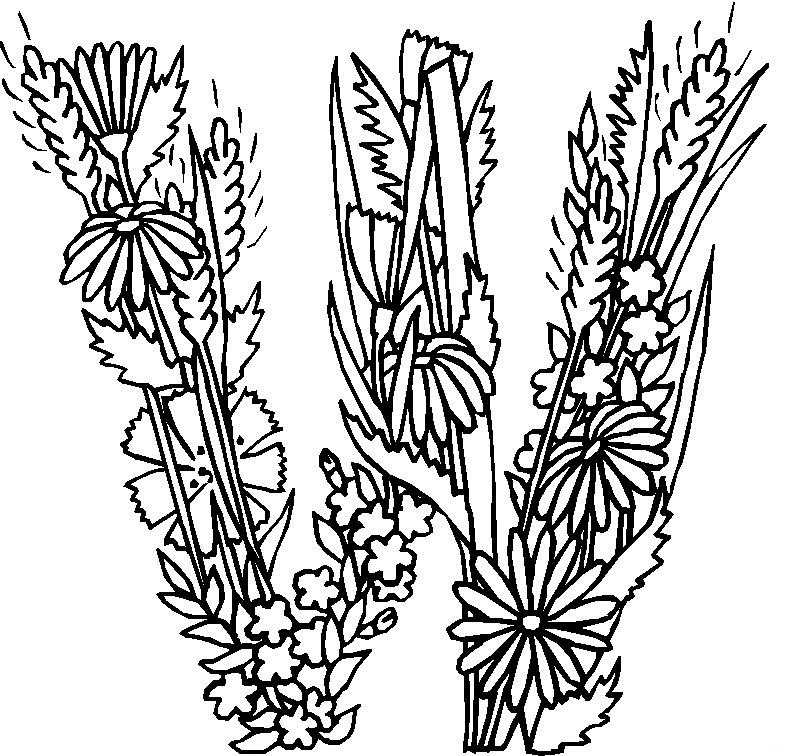 flower alphabet coloring pages - photo#22