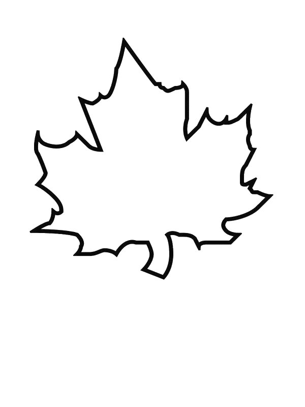 Kidsnfun 39 coloring pages of Leaves