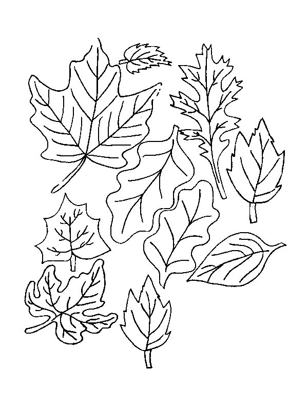 Playful image with leaves coloring pages printable