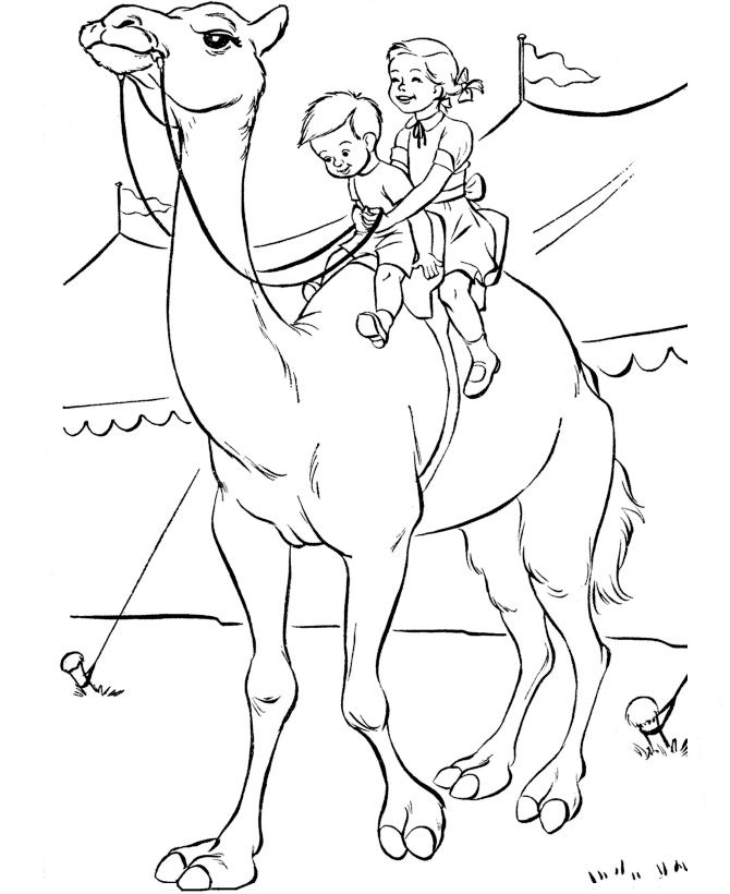Kids n funcom 39 coloring pages of Circus