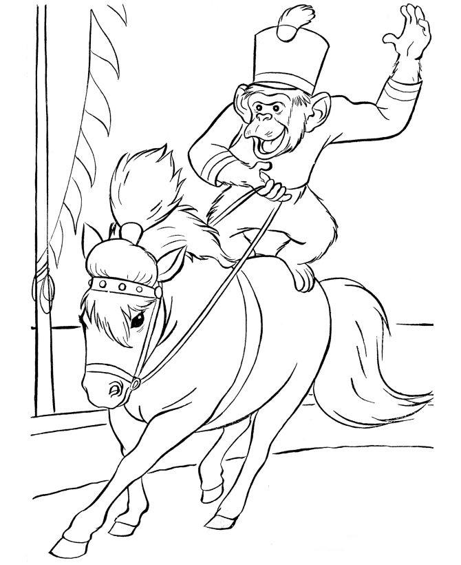 Kids-n-fun.com | 39 coloring pages of Circus