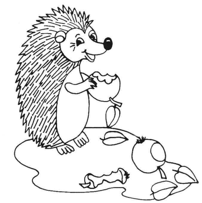 Hedgehogs 32 Coloring Pages Of