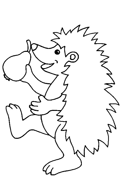 coloring pages - Hedgehog Coloring Pages Printable