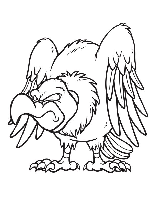 20 Coloring Pages Vultures