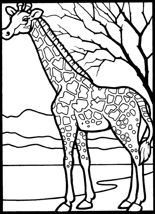 free giraffe coloring pages - photo#11