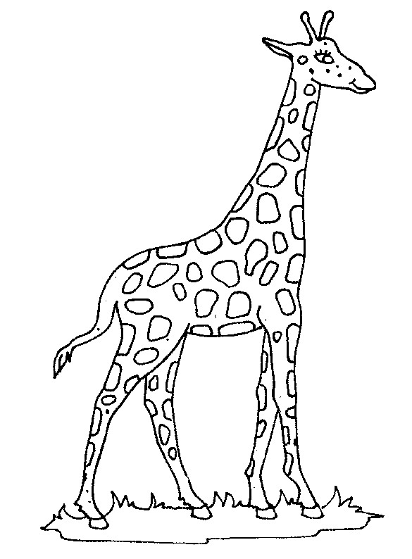 free giraffe coloring pages - photo#10