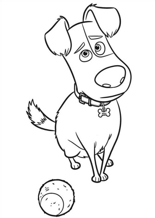 Kids N Fun Com 29 Coloring Pages Of Secret Life Of Pets Pets Coloring Page