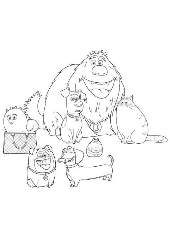 Secret Life Of Pets Coloring Pages Sketch Page