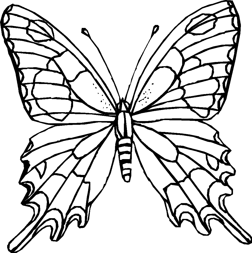 Of insects free coloring pages on art coloring pages - Coloring Pages Insects 16 Insects Coloring Pages