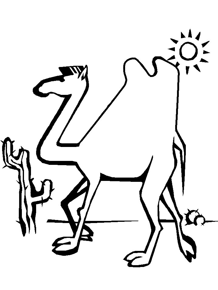coloring pages camel face - photo#31