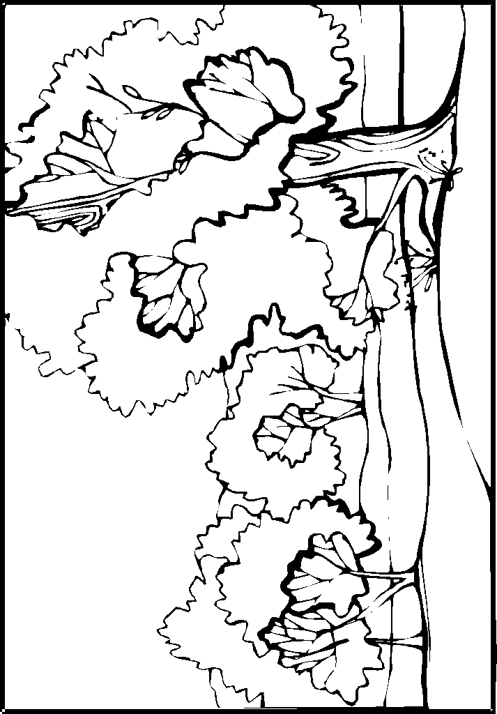 detailed landscapes coloring pages - photo#46