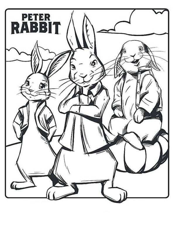 n 13 coloring pages of rabbit the