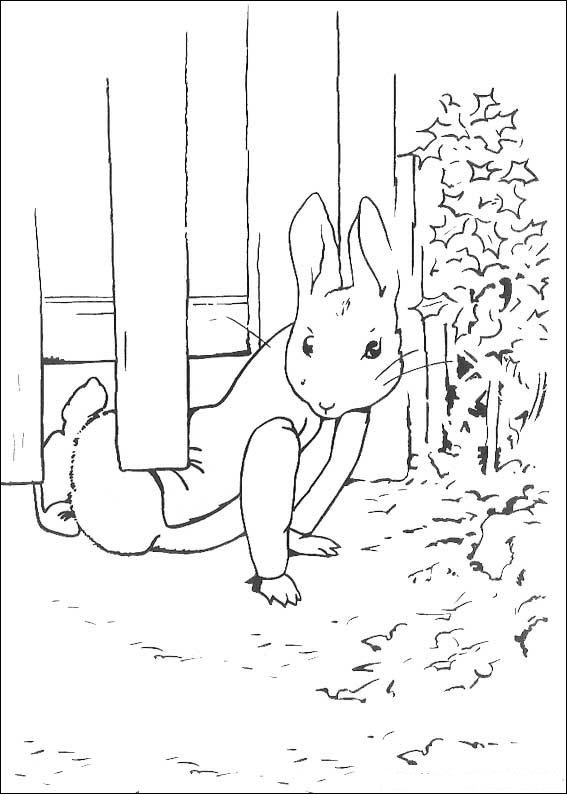 Kids-n-fun.co.uk | 29 coloring pages of Peter Rabbit