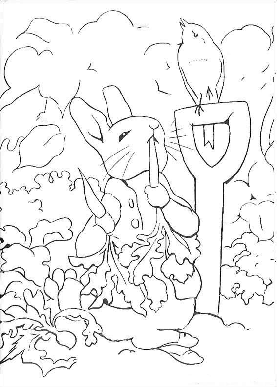 Peter Rabbit Coloring Pages Kidsnfun  29 Coloring Pages Of Peter Rabbit