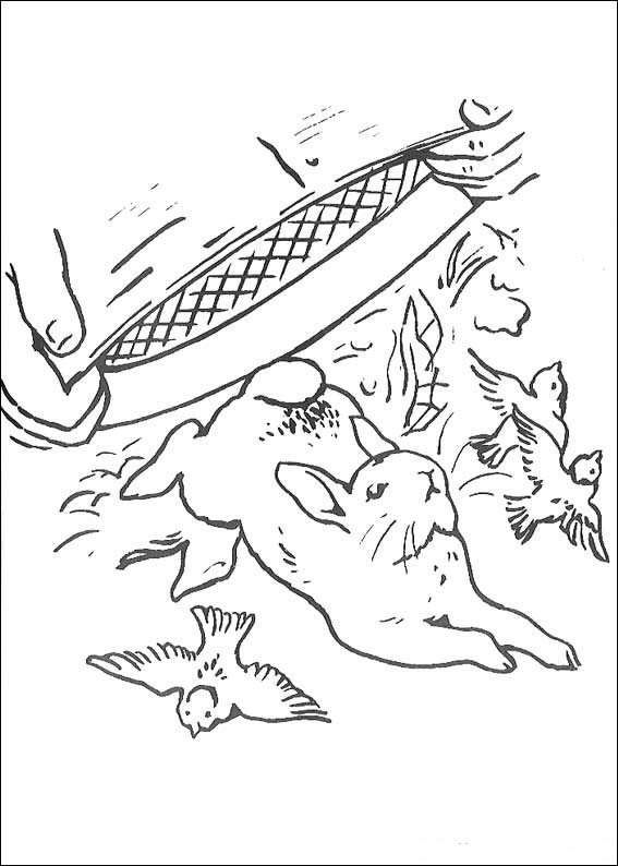 Kids n funcom 29 coloring pages of Peter Rabbit