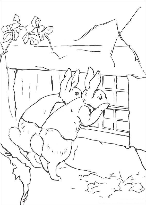 Kids N Fun Com 29 Coloring Pages Of Peter Rabbit