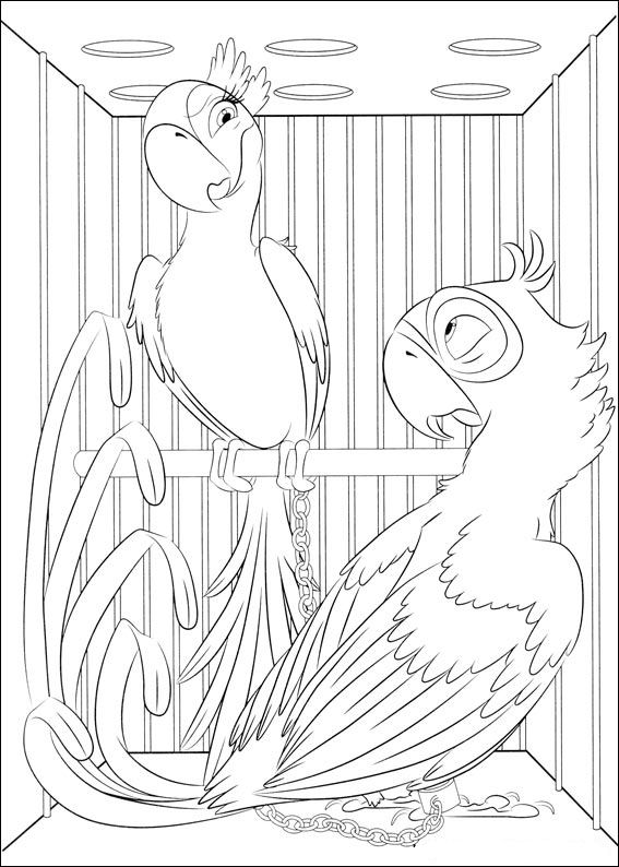 Kidsnfuncom  31 coloring pages of Rio
