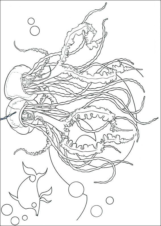 kidsnfun  13 coloring pages of shark tale