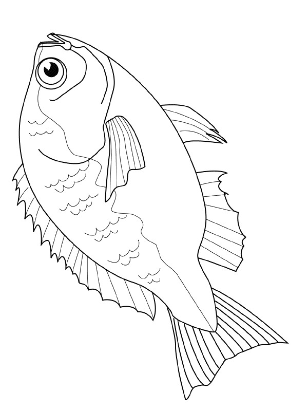 41 fish coloring pages - Printable Coloring Pages Of Fish