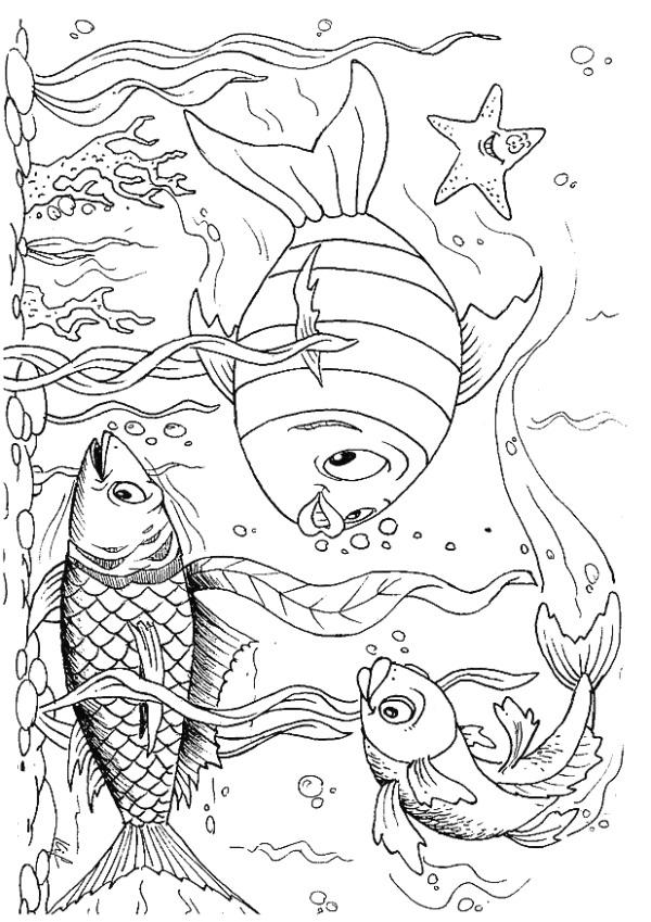 Coloring Pages Kids N Fun : Kids n fun coloring page fish
