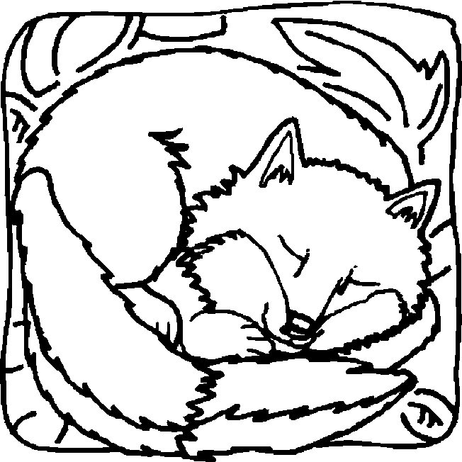Coloring Pages Of Foxes