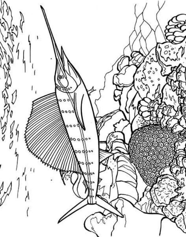9 Swordfish Coloring Pages