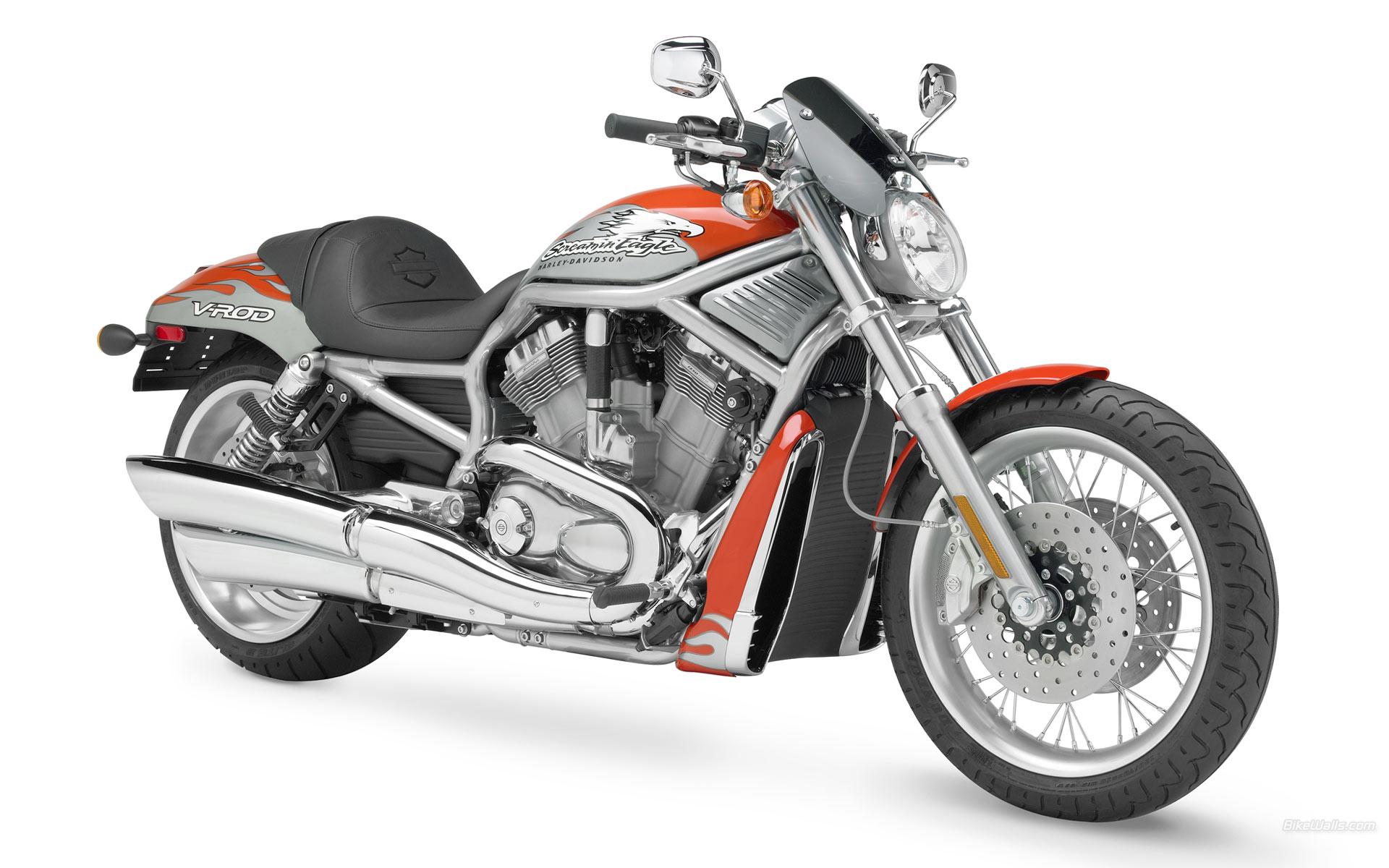 Kids N Wallpaper Harley Davidson Widescreen