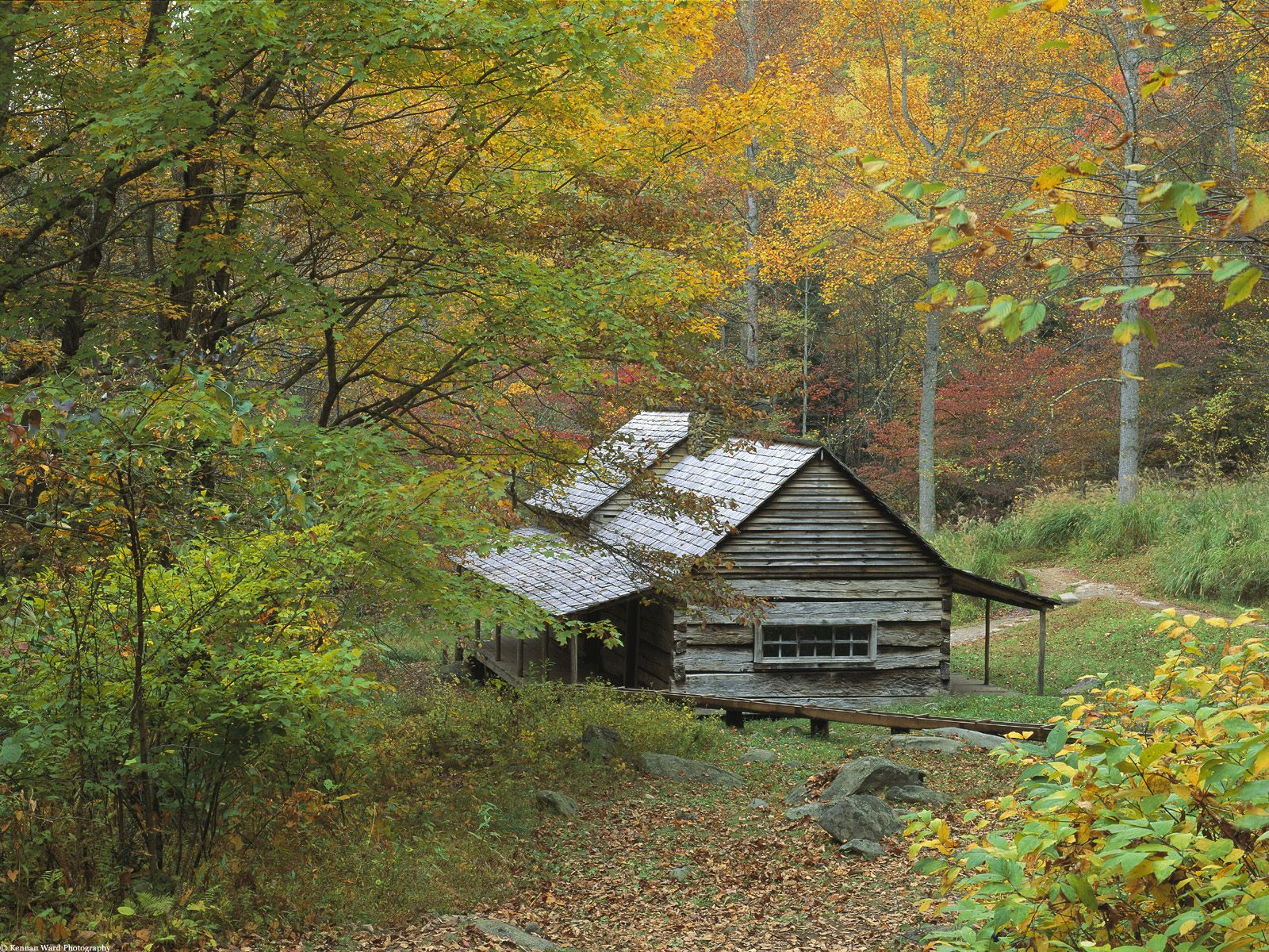 Kids n wallpaper national parks usa for Smoky mountain cottages